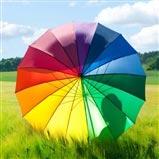 Color Wheel Stick Umbrella